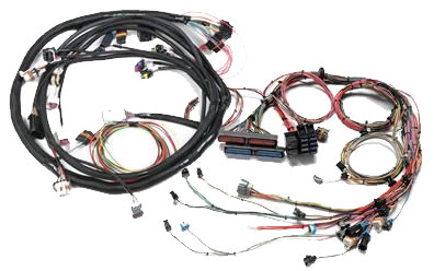 Fuel Injection Wiring Harnesses at Summit Racing on aftermarket gas tank, aftermarket chassis harness, aftermarket brakes, aftermarket tail lights, aftermarket stereo harness, aftermarket steering column, aftermarket seat, aftermarket engine harness, aftermarket shifter, aftermarket exhaust, aftermarket wheels,