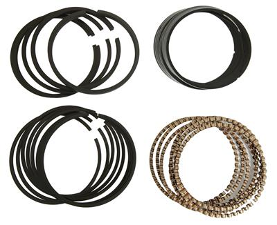 Hastings 2C4901S020 Single Cylinder Piston Ring Set