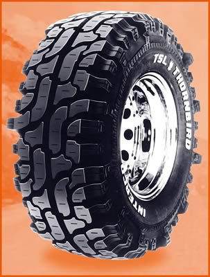 Interco TSL Thornbird Tires - Free Shipping on Orders Over ...