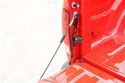 Dee Zee DZ43301 - Dee Zee Truck Tailgate Assists