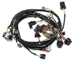Holley 558-102 - Holley EFI Systems Wiring Harnesses