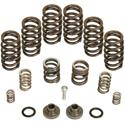 Click here for more information about BD Diesel 1040185 - BD Diesel Governor Spring Kits