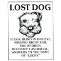 Click here for more information about Lost Dog Tin Sign
