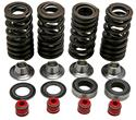 Click here for more information about Kibblewhite Lightweight Racing Valve Spring Kits