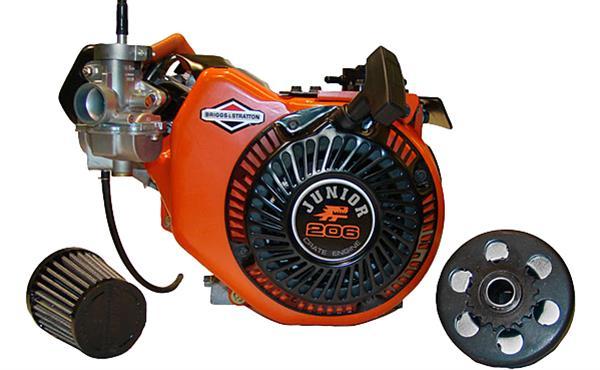 Briggs & Stratton Junior 206 Crate Engines 124332-8202