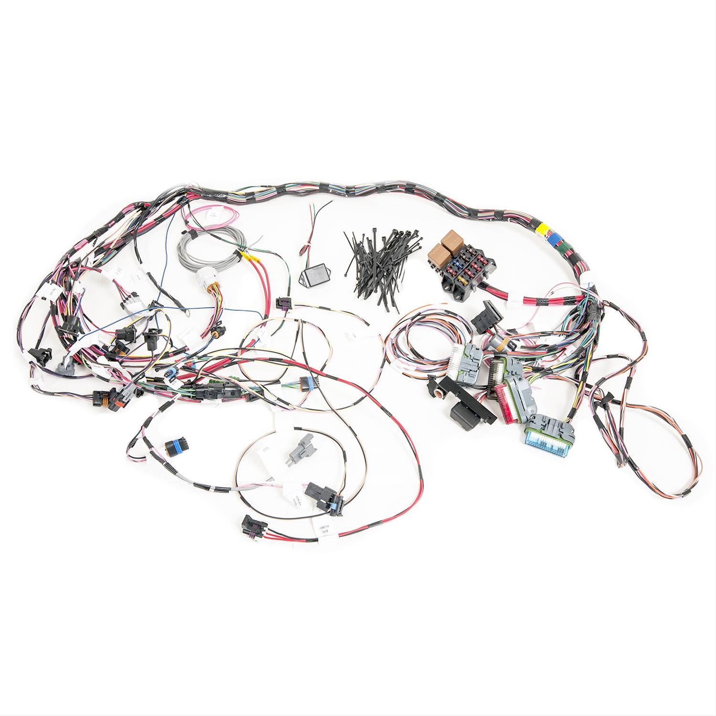 painless 60502 lt4 lt1 fuel injection wiring harness. Black Bedroom Furniture Sets. Home Design Ideas